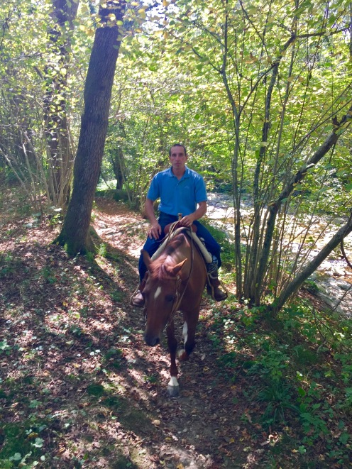 Riding in the forest