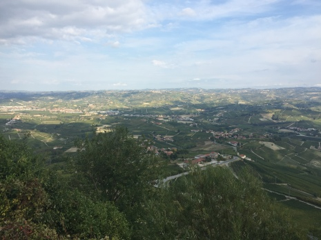 The view of the Barolo area
