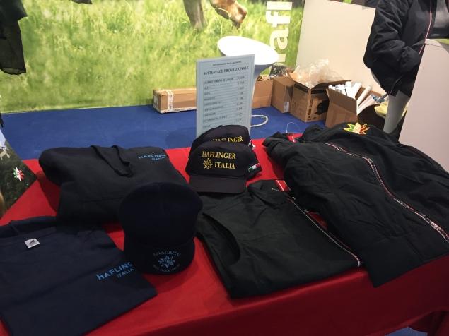 Haflinger clothes