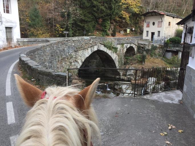 The bridge before Corio