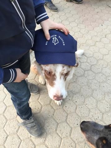 Dakota with the new cap