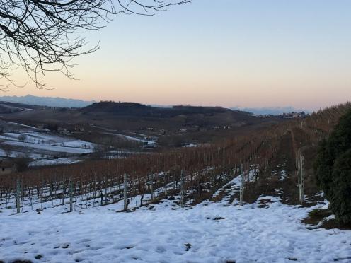 The view of Monferrato