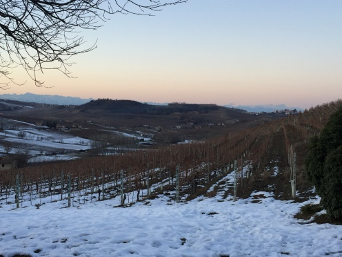 The view of Monferrato
