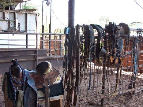 clean saddle gear