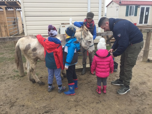 Kids and donkeys