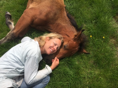 Cuddling the foal