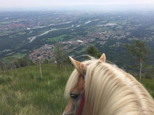 Looking towards Turin