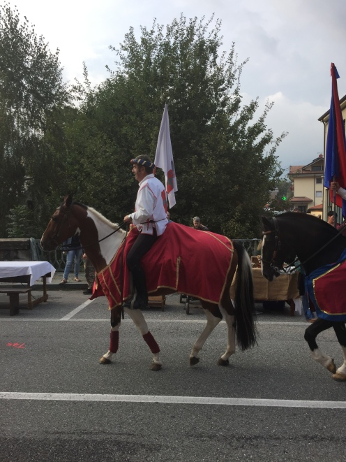 Dressed up horses