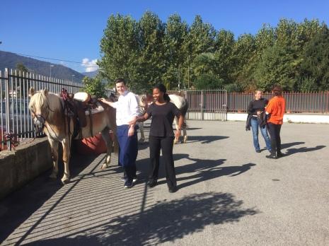 Horses visiting